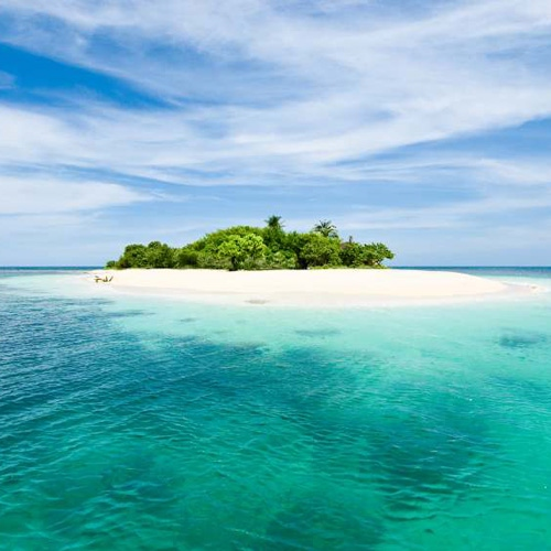 Free deserted island Essays and Papers  123helpmecom