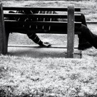 all gone boy* VIII (punk/psychedelic)13